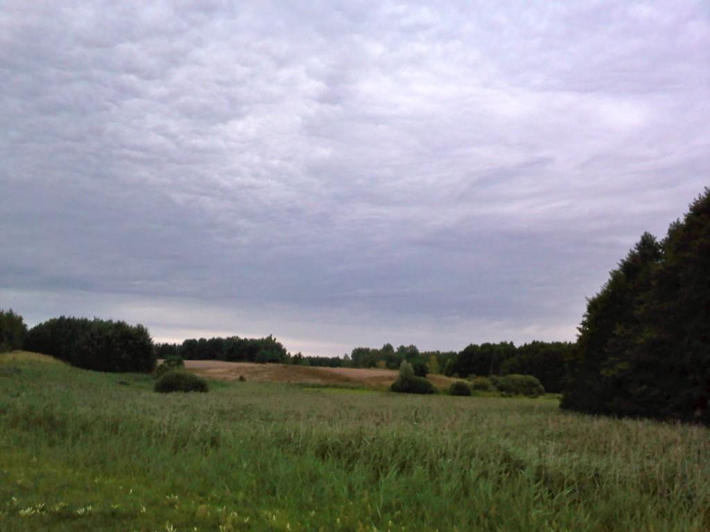 Dolina Swędrni