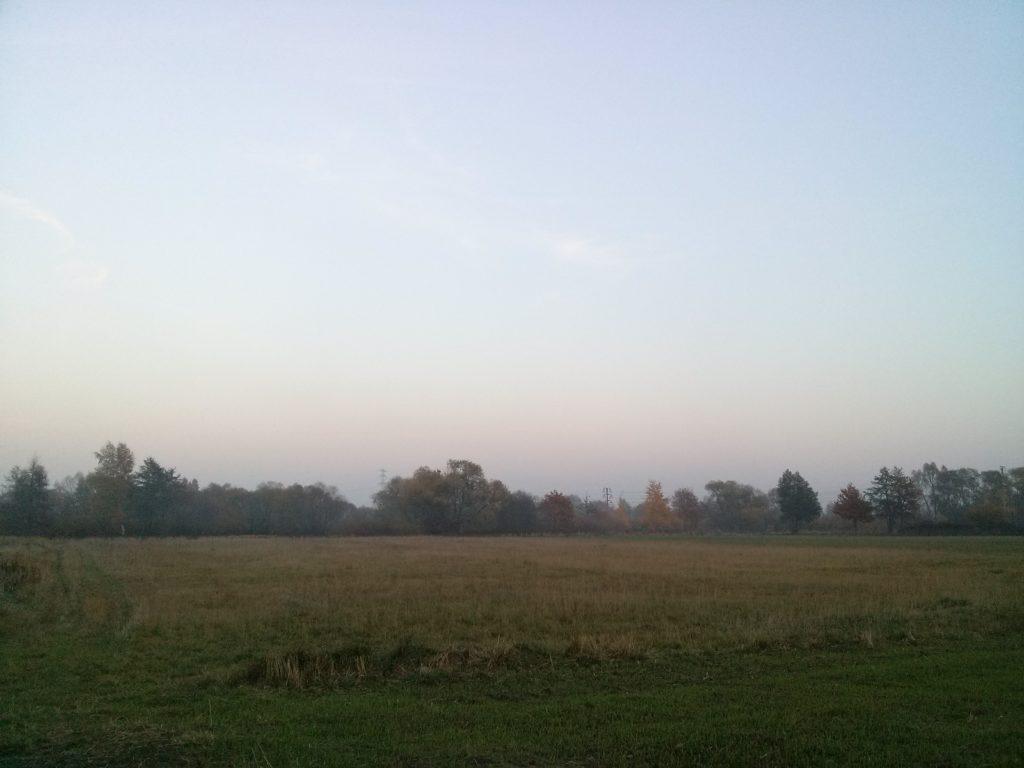 Jesienna mgiełka