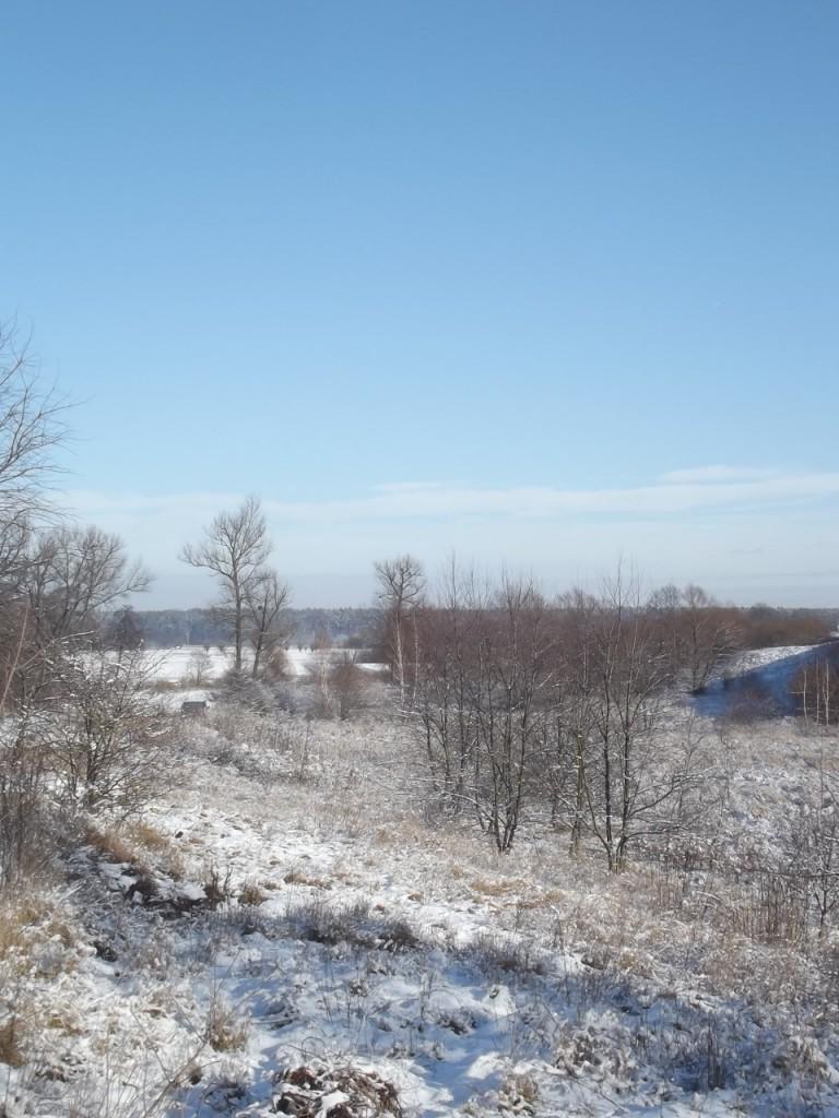 zima2_ - 1