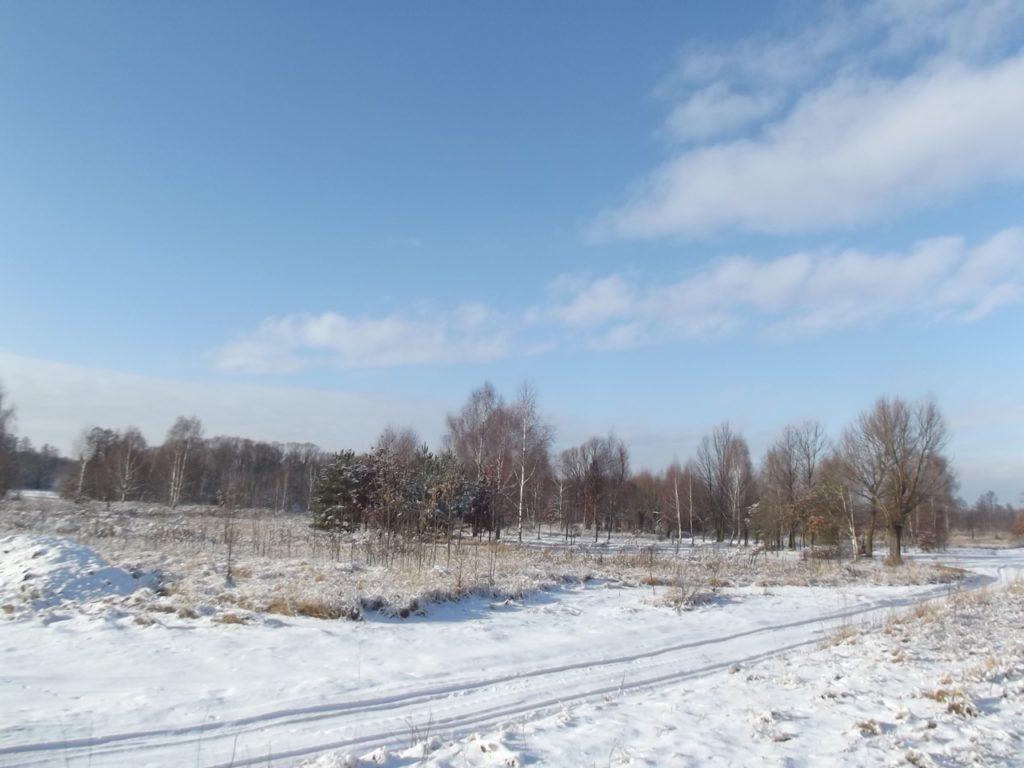 zima2_ - 2
