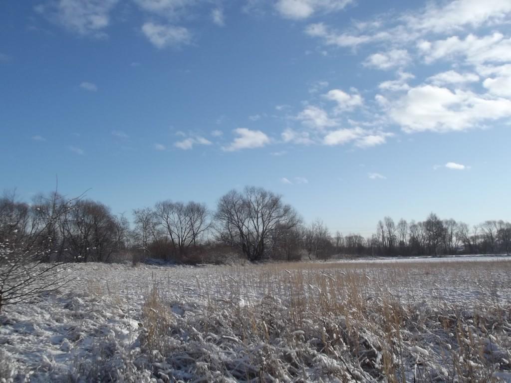 zima2_ - 7